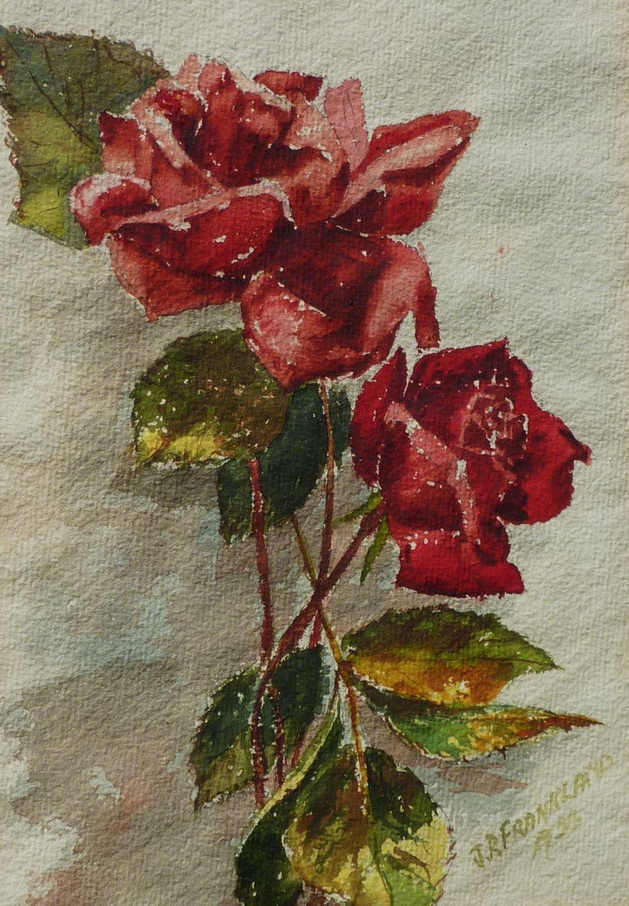 1933 Watercolor Painting Of Red Roses Signed From Dg On