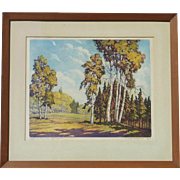 Floyd Leslie Thompson (1889 - 1965) American listed artist aquatint color etching Paper Birches Superior National Park Minnesota forest landscape