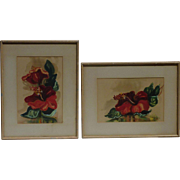 J. Llaine Colquhoun early 20th century American/ Hawaii listed artist still life flower Hibiscus PAIR watercolor paintings circa 1942