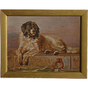 After Edwin Henry Landseer (1802- 1873) A Distinguished Member of the Humane Society by DOGS - NEWFOUNDLAND old hand colored print 1900's