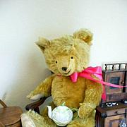 """Antique Mohair Teddy Bear-Huge 25"""" Tall"""