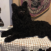 Rare Black French Lou Lou Mohair Pajama Dog
