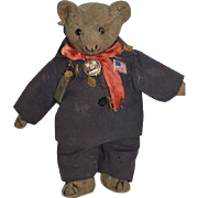 Old Wonderful Cabinet Size Mohair Button Eye Teddy Bear W/ Medals and  Costume