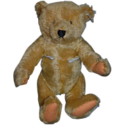 Vintage Steiff Teddy Bear Mohair Jointed Button Tag W. Germany