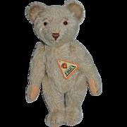 Wonderful Educa Teddy Bear Mohair Jointed W/ Tag Sweet