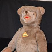 Wonderful Teddy Bear Educa W/ Tag Jointed German Large For Doll