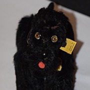 Vintage Doll Steiff Poodle Snobby Miniature Dog Jointed Mohair