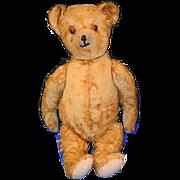 Antique Teddy Bear Mohair Jointed Adorable Button Eyes