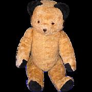Old Teddy Bear Jointed Unusual Black Ears Golden Brown SMILEY