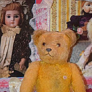 Old Teddy Bear PETZ Doll Toy Jointed Adorable