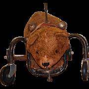 Old Doll Child Toy Riding Teddy Bear on Wheels Wonderful Push Toy Mohair Ride On Bear Display
