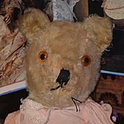 Old Teddy Bear Jointed Mohair Adorable