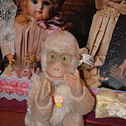 Steiff Jocko Monkey Mohair Jointed W/ Button and Tag Green Eye Cutie Doll Friend