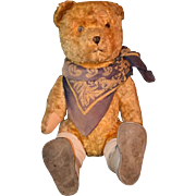 Old Teddy Bear Doll Friend Jointed ADORABLE