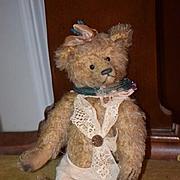 Vintage Teddy Bear Tonni Bears Holland Mohair Jointed Doll Friend