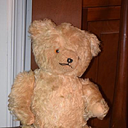 Old Teddy Bear Mohair Jointed Unusual Hump Back