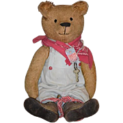 Old Teddy Bear Jointed Mohair Button Eyes and Smiling Large