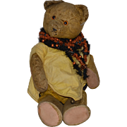 Old Teddy Bear Doll Friend Jointed WONDERFUL