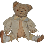 Old Teddy Bear Mohair Jointed Adorable