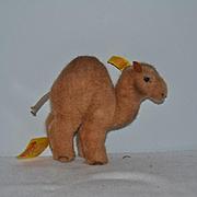 Vintage Steiff Trampy Camel Button Eye Tagged