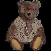 Vintage Steiff Teddy Bear Jointed W/ Button Tag Mohair 1950's