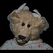 Wonderful Teddy Bear Artist Button Eyes Jointed