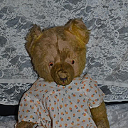 Antique Teddy Bear Jointed Mohair Different Look Doll Friend