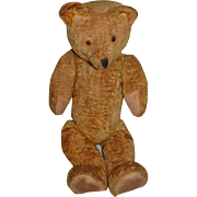 """Old Teddy Bear Doll Friend Jointed 21"""" Tall Flat Footed"""