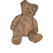 Old Mohair Teddy Bear Jointed In Old Wood