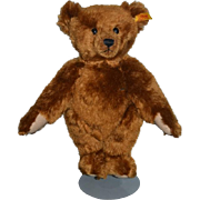 Wonderful Teddy Bear Steiff Jointed w/ Button Tag Chocolate Brown