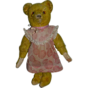Old Teddy Bear Jointed Mohair Straw Stuffed All Dressed up!