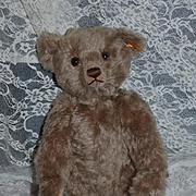 Vintage Teddy Bear Steiff W/ Button Tag Jointed Mohair