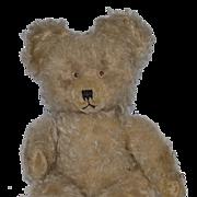 Old Teddy Bear Jointed Mohair Unusual Look Chiltern?? English Bear