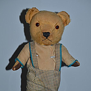 Old Teddy Bear Doll Friend Mohair Jointed Leather Paws Big Glass Eyes