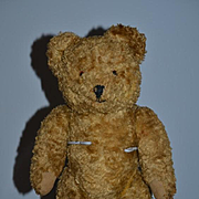 "Old Teddy Bear ""Sidney"" Jointed w/ Provenance"