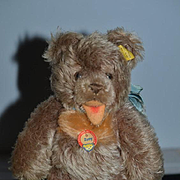 Vintage Teddy Bear Zotty Steiff Jointed W/ Tag and Button Tag