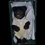 R. John Wright Toddler Bear Series SIMON #116 Teddy Bear Doll Friend In Original Box