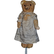 Old Teddy Bear Jointed Unusual Long Snout Sweet