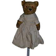 Old Teddy Bear Mohair Jointed Dressed SWEET