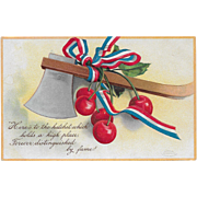 Vintage Political Patriotic Postcard Hatchet & Cherries