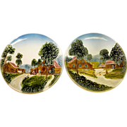 German MAJOLICA Chargers/Decorative Plates