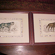Pair of Wolf Engravings Lizar's Natural History 1812
