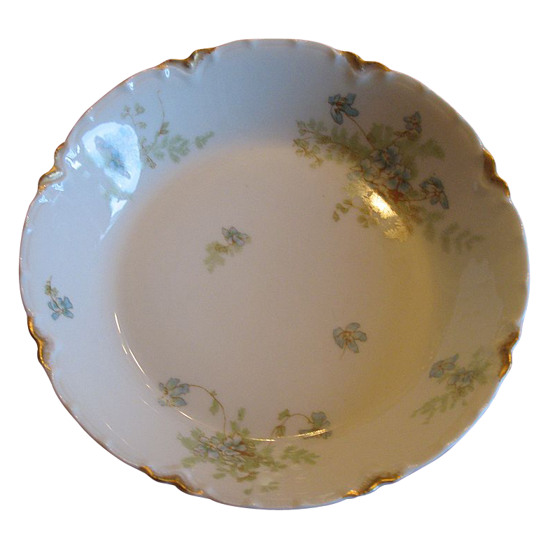 Haviland &Co. Bowl delicate with violets and ferns.