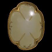 Bavaria porcelain dresser plate  1912 Handpainted