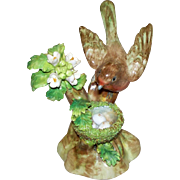 "Antique Crown Staffordshire J.T. Jones  ""Robin"" circa 1921 perfect"