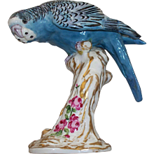 """Royal Worcester """" Parakeet """""""