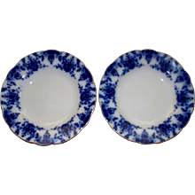 "Antique Pair of  Ridgway "" Osbourne "" Flow-Blue Plates  9""  circa 1905"