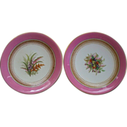 Pair of Antique Worcester Plates Hand-Painted Enamels circa 1880s