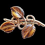 Gorgeous 12K GF Carved Tigers Eye Leaf Vintage Brooch - Signed Winard