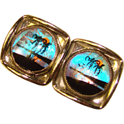 Awesome CUFFLINKS Vintage Butterfly Wing